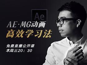 魏编:AE·MG动画高效学习法
