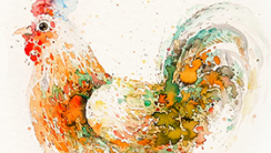插画师的12种武器:彩色墨水篇